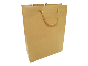 LARGE PLAIN PAPER BAG