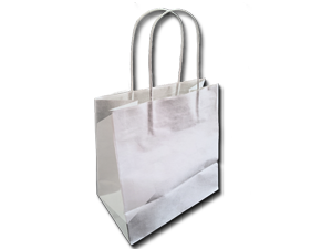 WHITE PAPER BAG WITH HANDLE