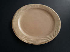 BROWN PAPER PLATE